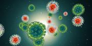 Microzellen
