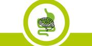 cervello_home